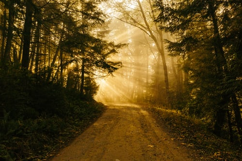 Ritual Abre caminos Berwyn
