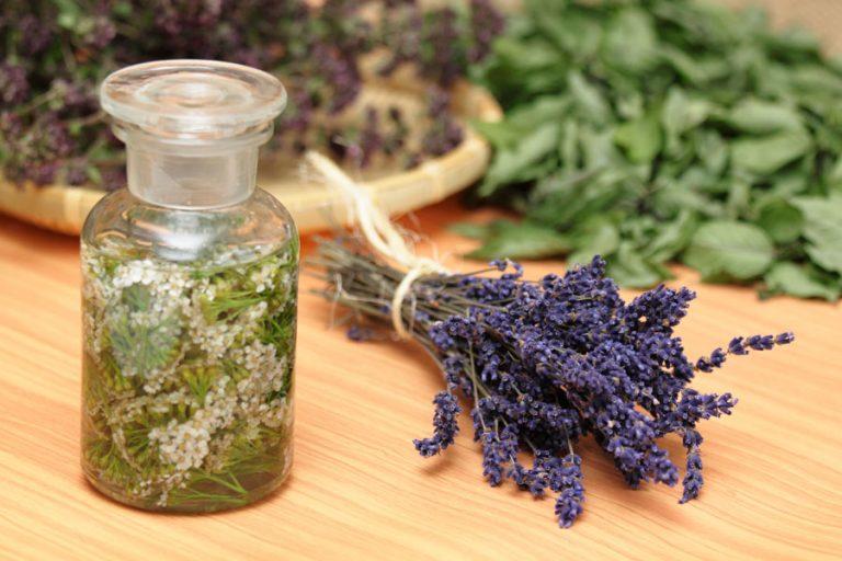 ¿Cómo se usan las hierbas en rituales de amor?