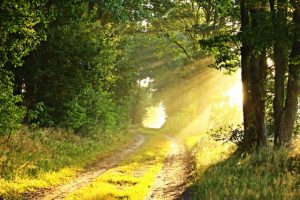 Cada cuánto es necesario un Ritual Abre Caminos
