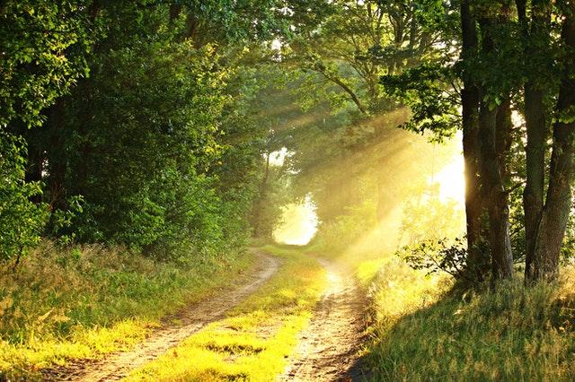 ¿Cada cuánto es necesario un Ritual Abre Caminos?